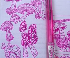 mushrooms and pink image