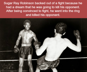 boxing, quotes, and relatable image