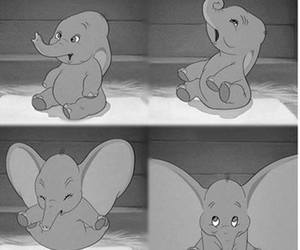 black and white, dumbo, and grey image
