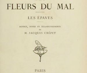 baudelaire, poetry, and les fleurs du mal image