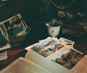 vintage, photography, and book image