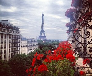 paris, flowers, and red image