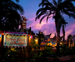 amusement park, lights, and palm tree image