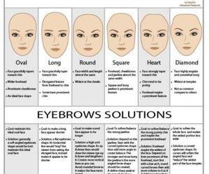 eye, brows, and eyebrow image