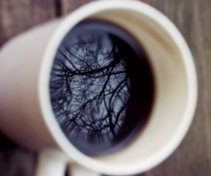 coffee, cup, and tree image