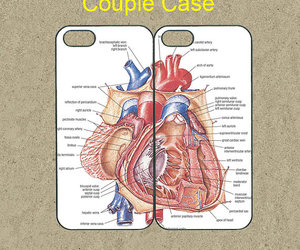 cute iphone 5 case, iphone 5c case, and iphone 5 case image