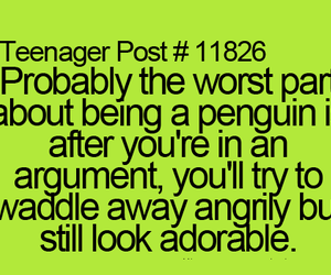 penguin, teenager post, and funny image