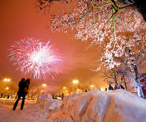 fireworks, winter, and tree image