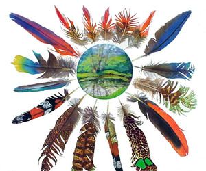 earth, feathers, and indie image
