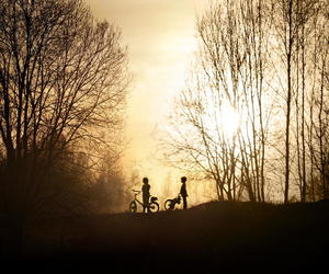 bicycle, kids, and trees image