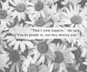 quote, destroy, and people image