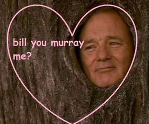 bill murray, funny, and lol image