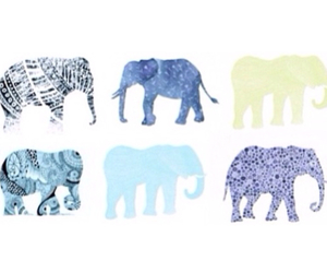 elephant, overlay, and transparencies image