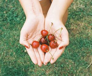 cherries, food, and cherry image