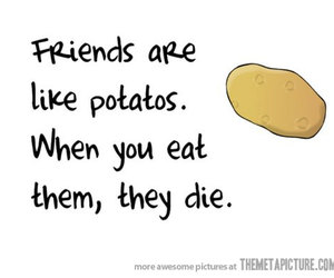 friends, potato, and funny image