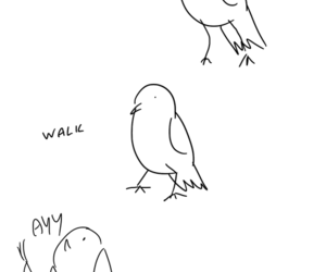 adorable, bird, and ayy image
