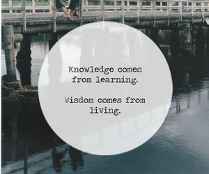 quote, knowledge, and learning image