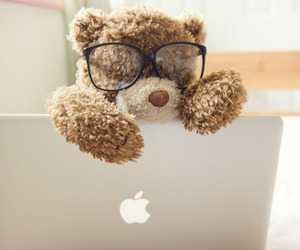 cute, bear, and apple image