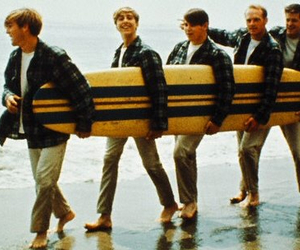 the beach boys, music, and swag image