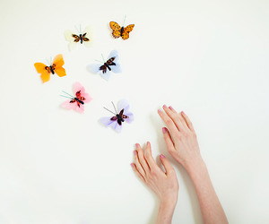 butterfly, cute, and hands image