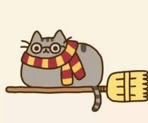 cats, harry potter, and pusheen image