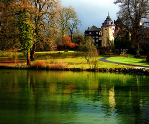 nature, germany, and laubach image