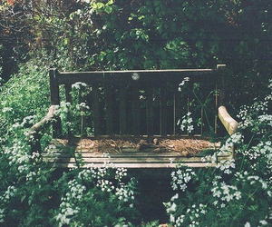 flowers, vintage, and bench image