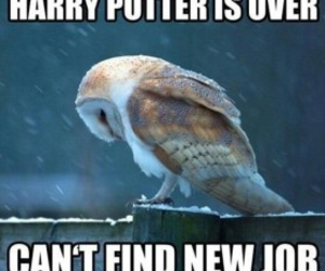 harry potter, funny, and quote image