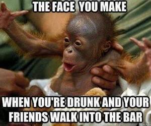 drunk, bar, and funny image