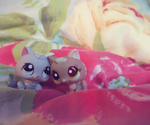 adorable, cats, and lps image
