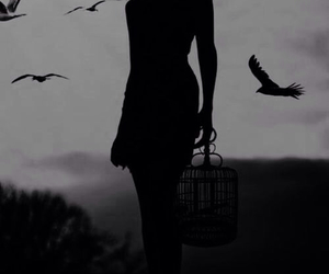girl, bird, and cage image