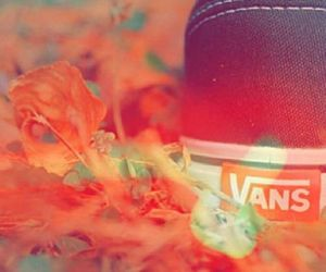 vans shoes flowers orange image