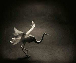 beautiful, Paper, and bird image