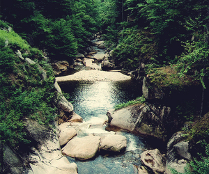 nature, river, and trees image