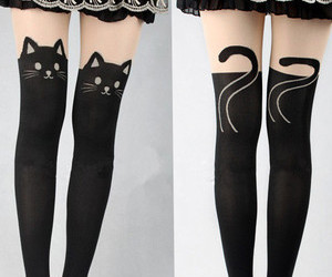 cat and tights image