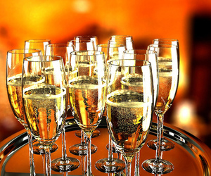 beautiful, photography, and champagne image