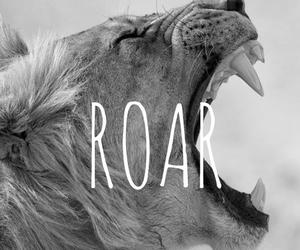 roar, lion, and animal image