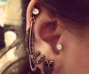piercing, earrings, and owl image
