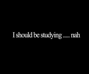 studying, quote, and school image