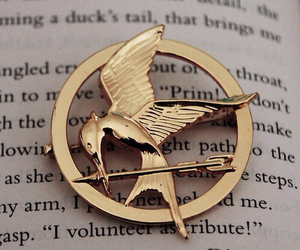 book, hunger games, and mockingjay image