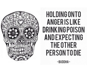 anger, Buddha, and poison image