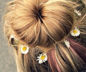 daisy, pink, and tumblr image
