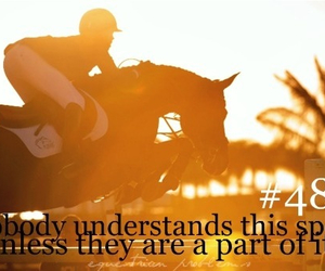horse, quotes, and equestrian image