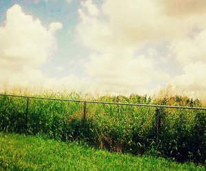 blue, clouds, and fence image