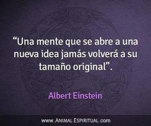 Albert Einstein, frases, and ideas image