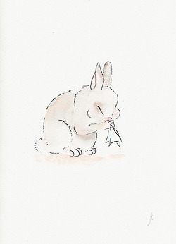 bunny, drawings, and Dream image