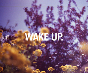flowers, text, and wake up image