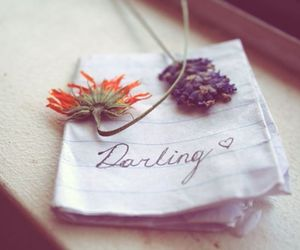 beautiful, darling, and flower image