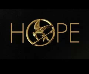 hope, hunger games, and the hunger games image