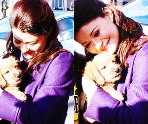 cuteness, cutness, and ouat image